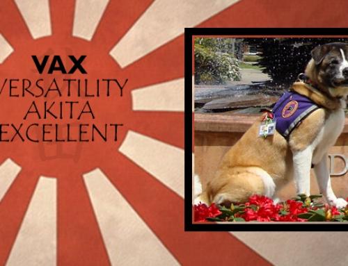 Westar's Mighty Faithful Zadok CDX RE AX MXJ FX THD CGC